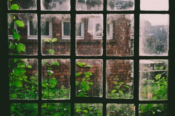 L'écriture, cette fenêtre ouverte vers d'autres mondes